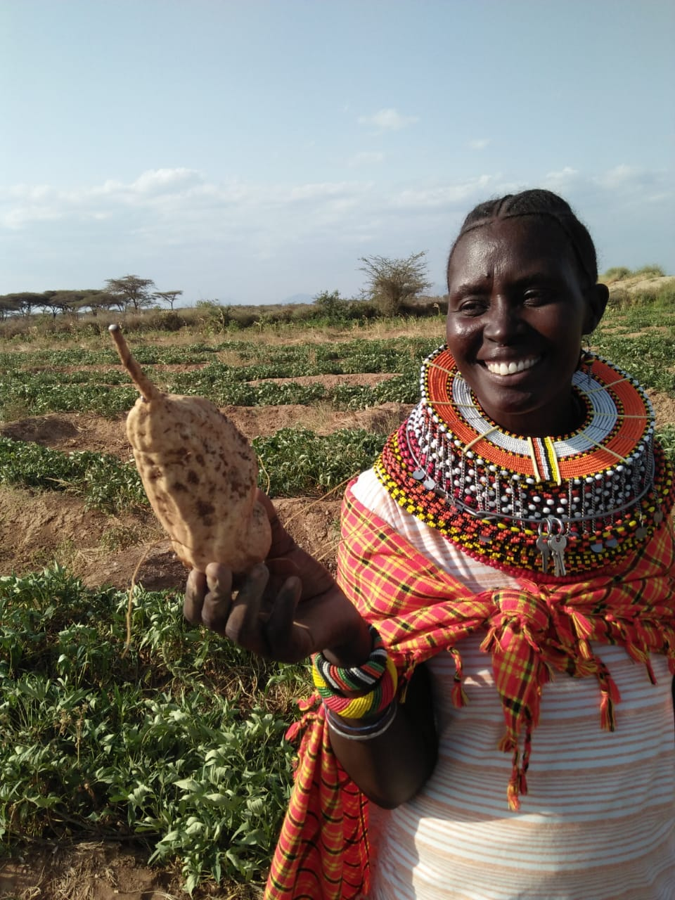 Isiolo Country Kenya Smiling farmers from ActionAid
